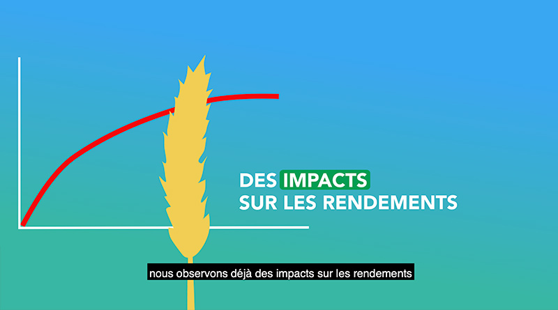 Chambre d'Agriculture du Grand Est - Vidéo animée ACSE